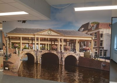 GGZ Leiden